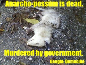 Possum Democide