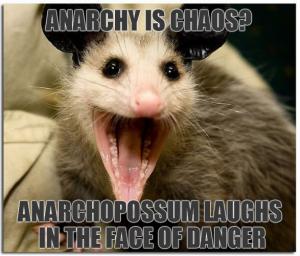 anarcho-possum chaos