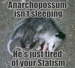 anarchopossum meme